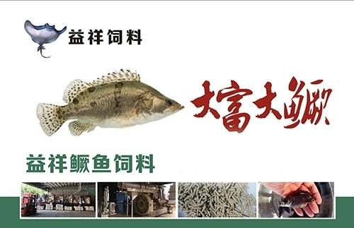 鱼类饲料的营养要素