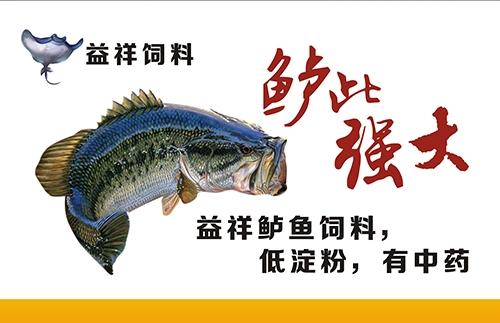嘉兴鲈鱼饲料